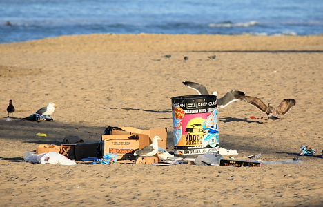 The Aftermath Of Volcom Surf Contest At El Porto