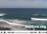 turtle_bay_east